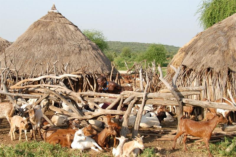 Aafrika külaelu.