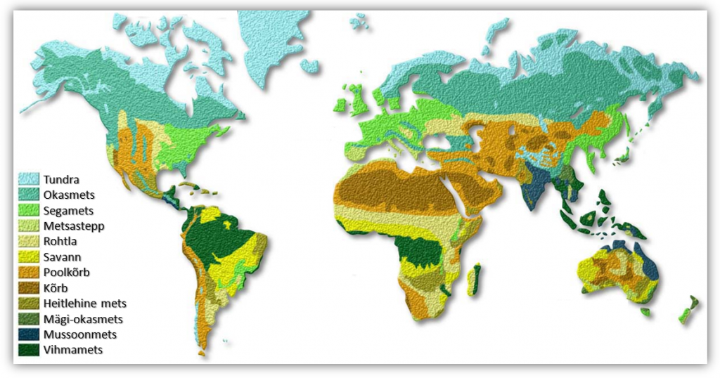 Maailma taimkatte kaart