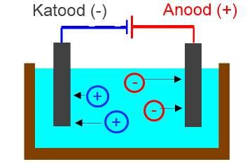 Elektrolüüsi käigus liiguvad katioonid katoodile ning anioonid anoodile