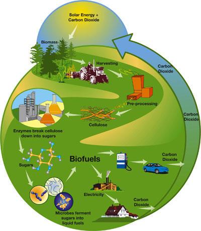 Biokütuse teekond valmistamisest kasutamiseni