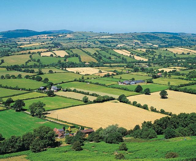 Põllumajandus on enim levinud maakasutusviis