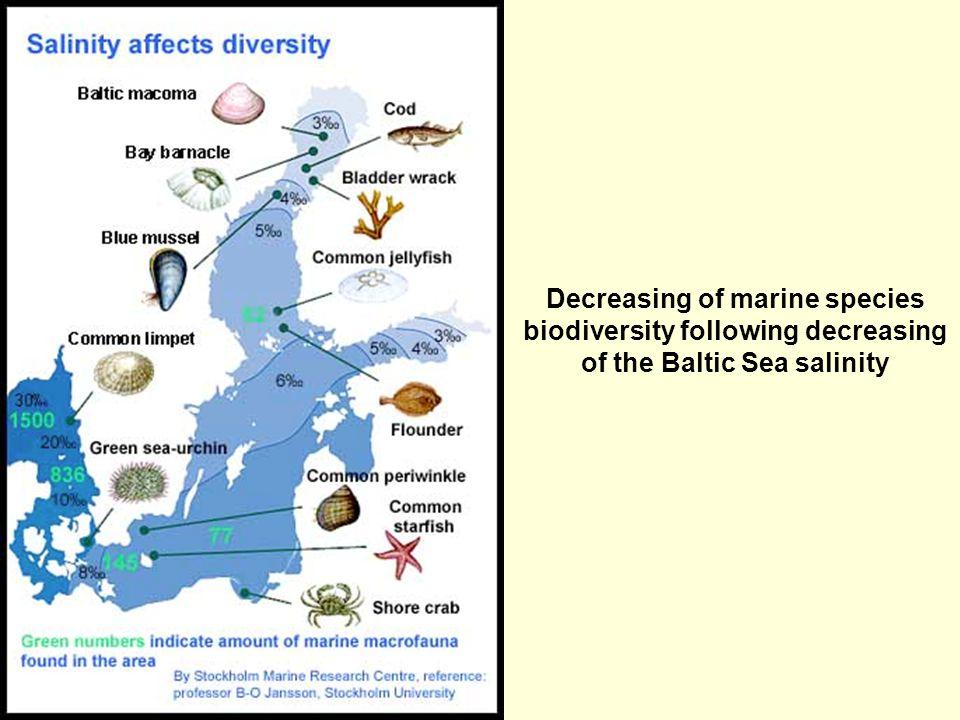 Läänemere loomad mõjutatud soolsuse gradiendist