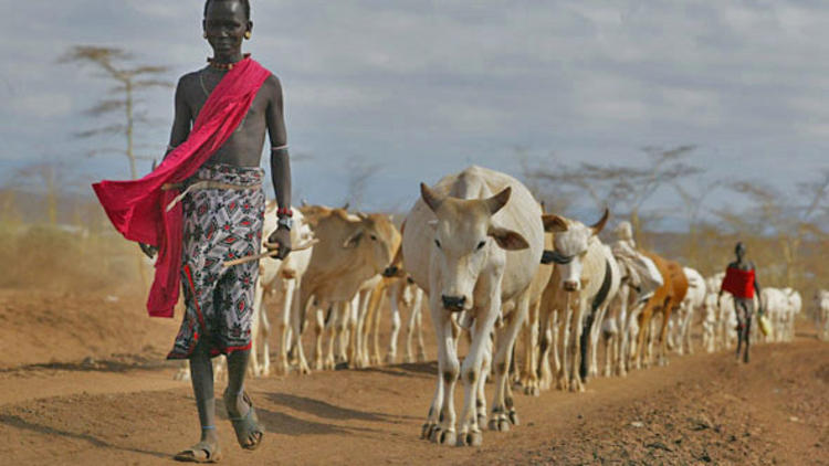 pastoralist