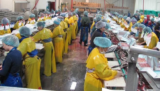 Võõrtööjõud tootmisliinil