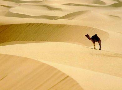Sahara kõrbes on samapalju liivateri, kui osakesi ühes moolis