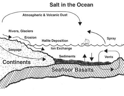 Salt-In-Oceans