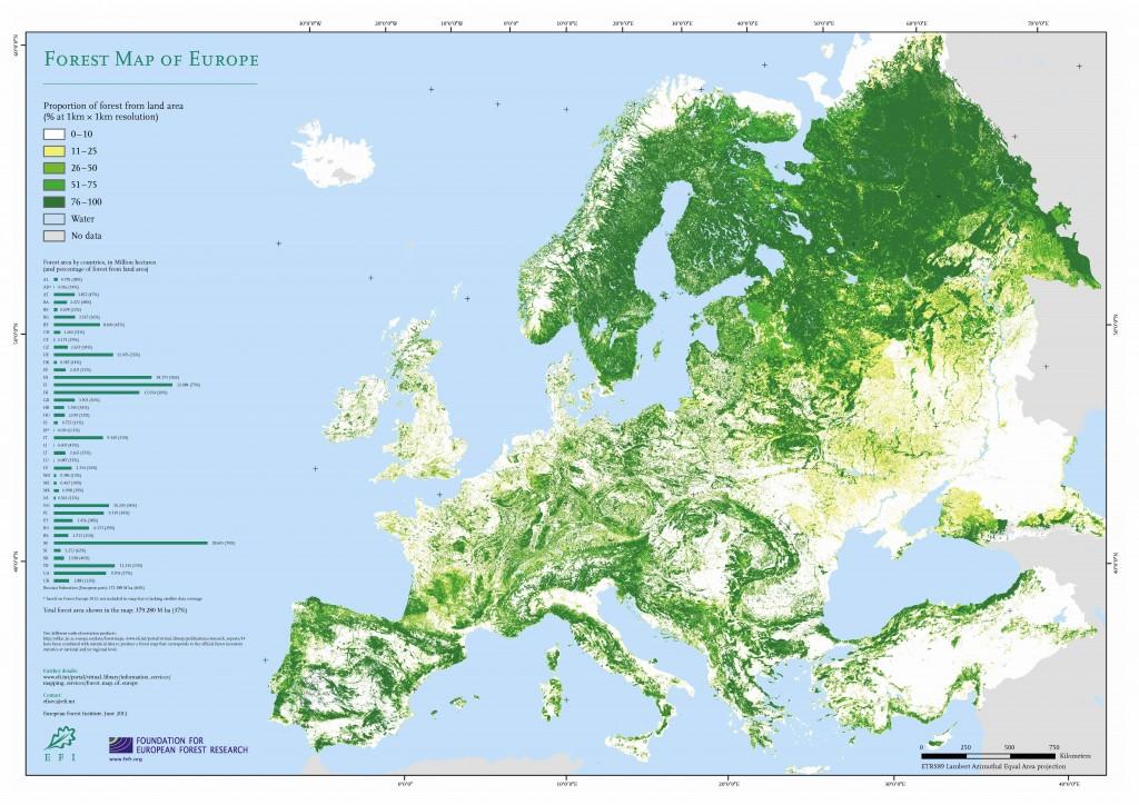 Metsasuse kaart
