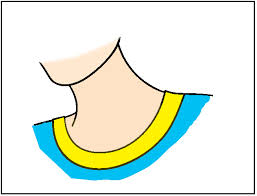 this is my neck