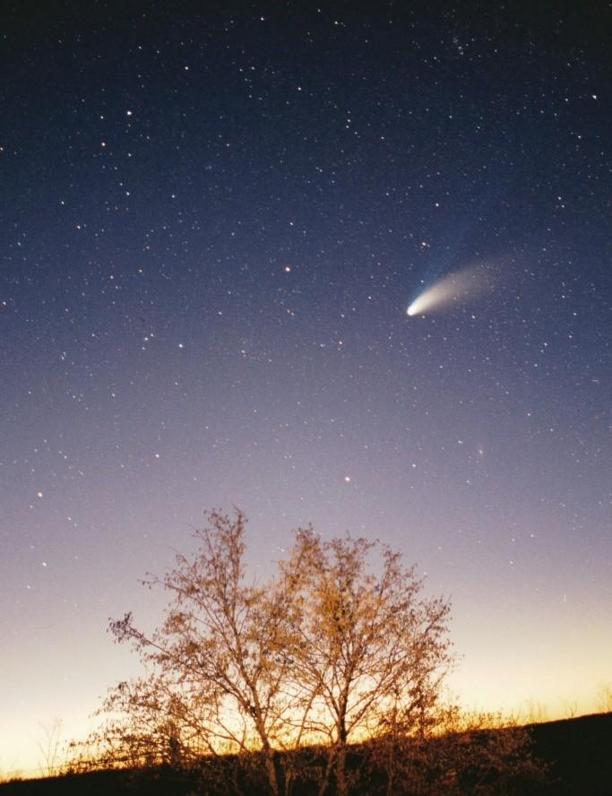 Komeeti saatev saba on neile iseloomulikuks tunnuseks.