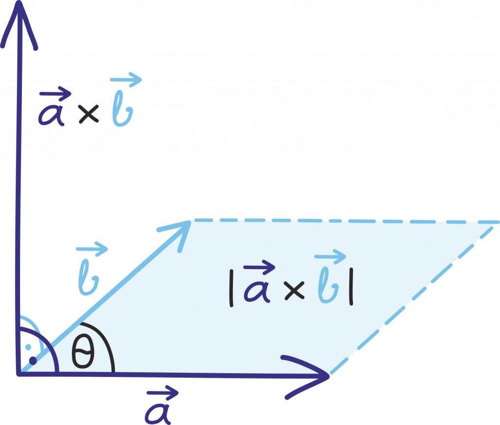 vektor40