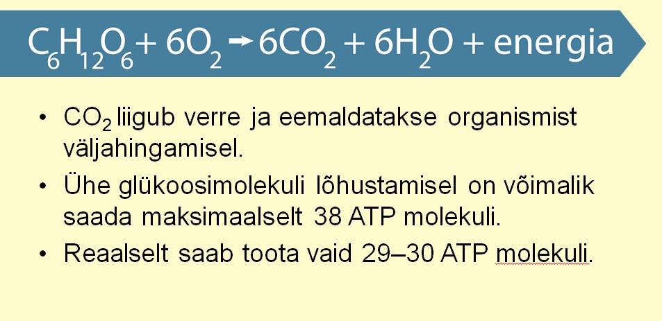 BioloogiaRakuHingamine7
