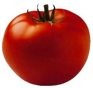 Terve tomat