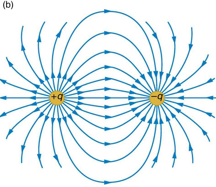 Erinimelise võrdse suurusega laengupaari elektrivälja jõujooned
