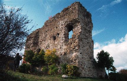 Esimene ordulinnus ehitati Vasknarvasse 14. sajandi keskel, veidi vähem kui sajand hiljem ehitati uus. Linnus oli populaarne palverännakute siht - seal said pimedad nägemise ja kurdid kuulmise tagasi. Liivi sõjas linnus purustati, see taastati küll uuesti 17. sajandi alguseks, kuid Põhjasõja aegu jäi aga lõplikult varemetesse.